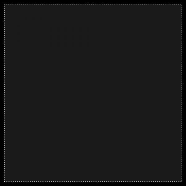 Sunbounce CAGE SIDE or SKY Black Cover MOLTON/ DUVETYNE BLACK/ BLACK 160gr m² -nahtlos - SEITEN/ DECKEN DUVETINE Schwarze Decke ändert durchsichtig -2/3 in MATT - Schwarz